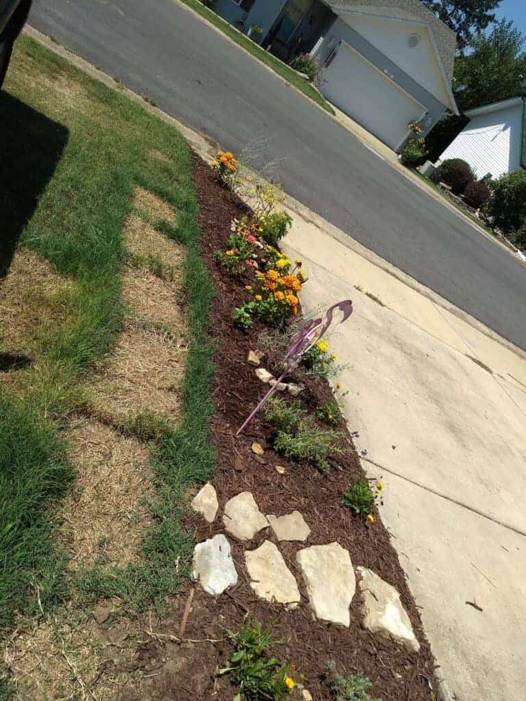Driveway strip of plants and a few choice stepping stones for a simple flower garden for beginners