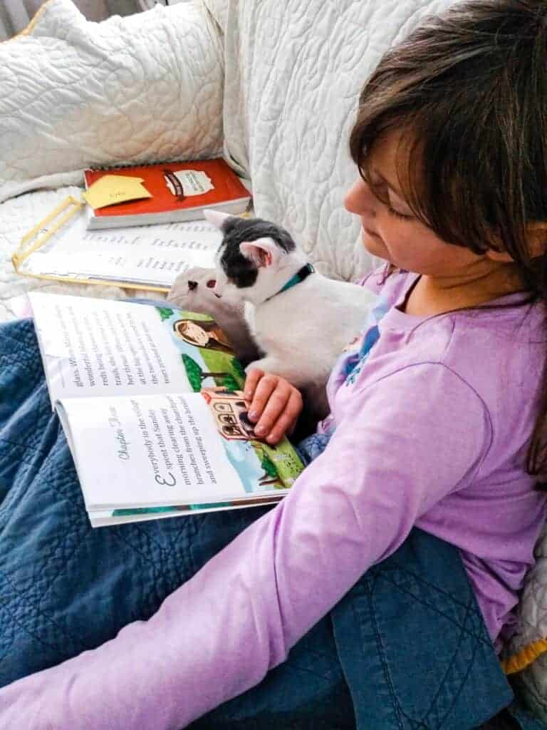 A little girl sits on a couch cuddled up in a blanket with her kitty reading a book.